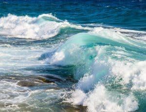 Rettung der Meere