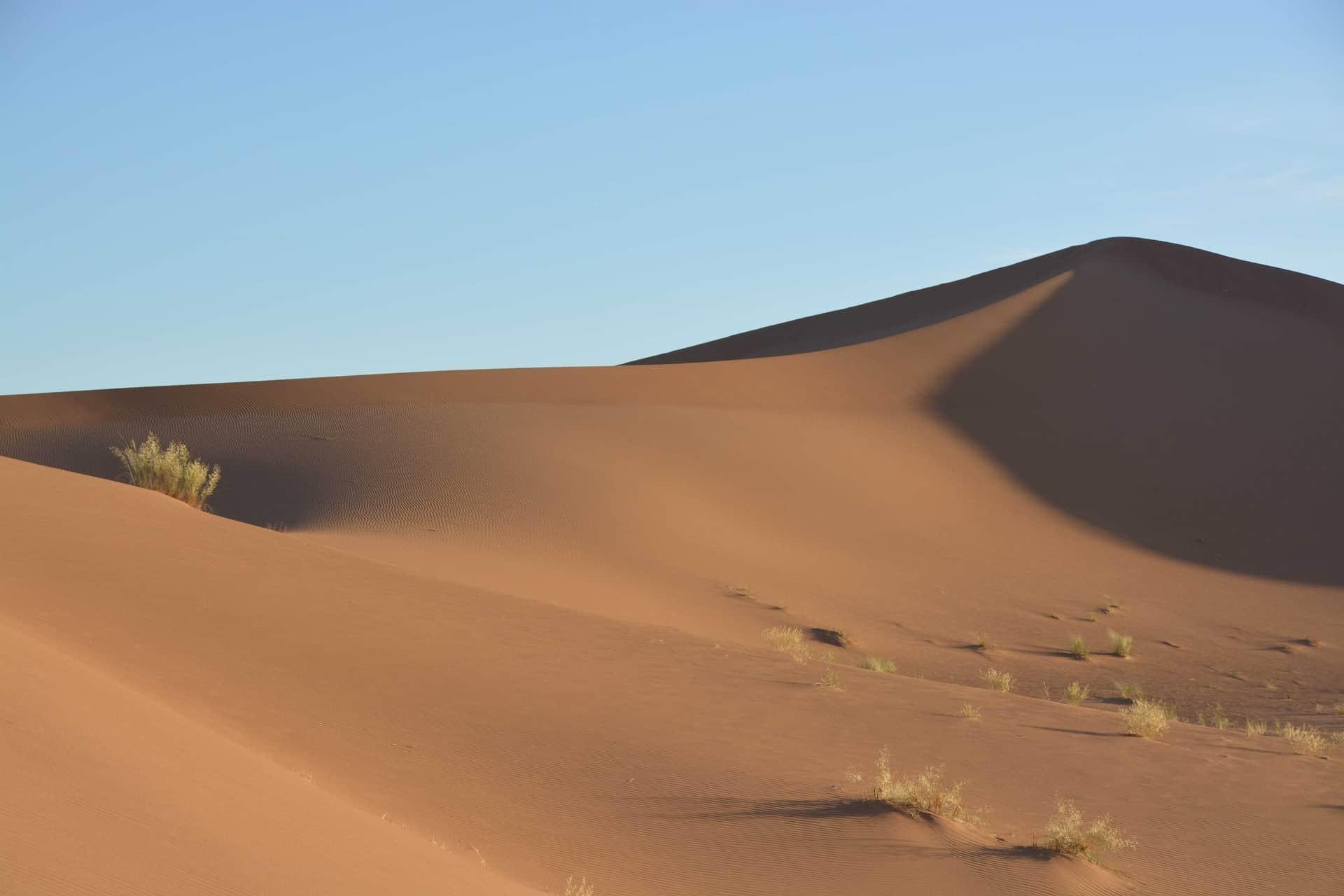 Die Sahelzone wird grüner