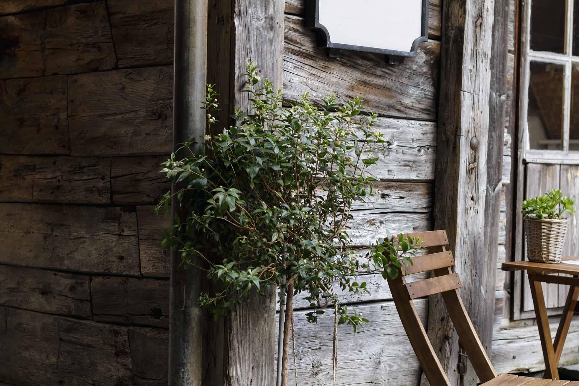 nachhaltiges Haus