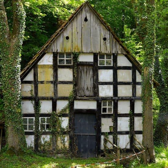 begrüntes Haus