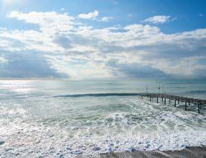 Oceal CleanUp